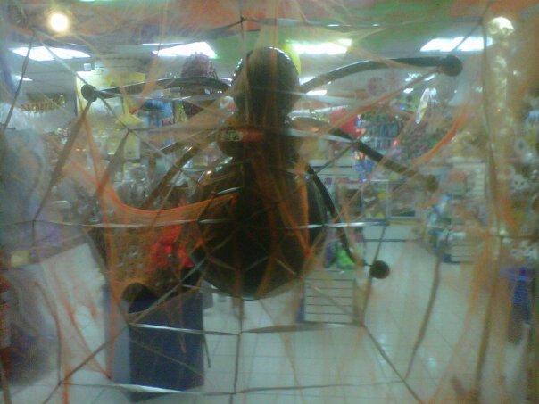 Venom de globoflexia en una tienda de Las Condes con Apoquindo