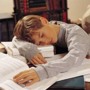 El apocalipsis de las tareas escolares
