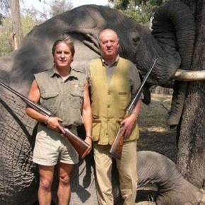 El elefante, el rey y Ana Karenina